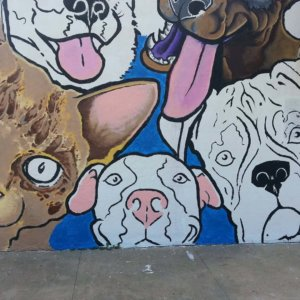 Vidor Animal Shelter Mural